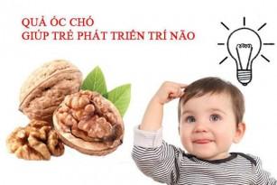 Thường xuyên ăn các loại hạt tốt cho sức khỏe trẻ nhỏ ra sao?